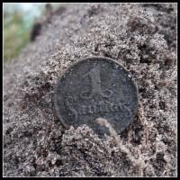 Monety z Litwy...